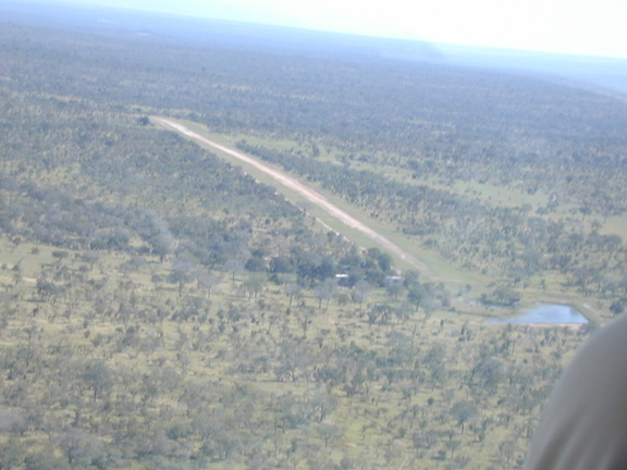 Djuma's airstrip. To prevent hyena from chewing the tires off of planes left unattended, they must cover them with cut-off steel drums.