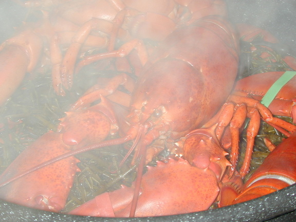 cooked_lobster.jpg